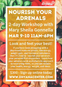 Nourishing Your Adrenals with Mary Sheila Gonnella @ The dhyana Center